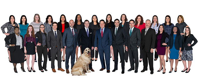 stewart-law-offices-attorneys-and-staff-group-photo